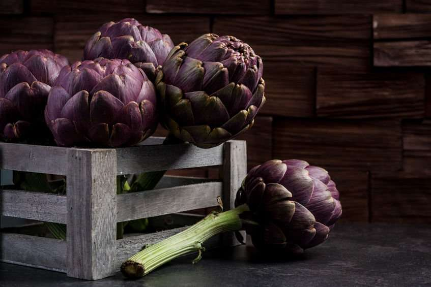 carciofi-violetti